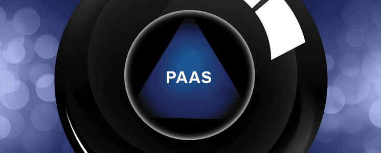 The Year of the PaaS